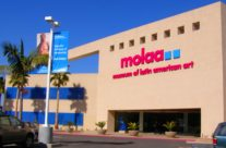 molaa Main Entry 2